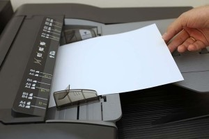 imprimir vida laboral